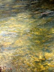 primavera-río
